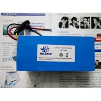 Quality Lithium Ion Polymer Battery Pack: 24V 12Ah (310.8Wh, 12A rate) with PCM for E for sale
