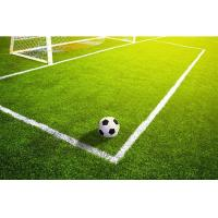 China Football Turf  Artificial Grass Carpets For Football Stadium, 40mm Natural Turf For Football Field on sale