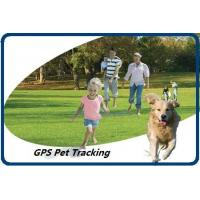 GPS Pet Tracking Manufactures