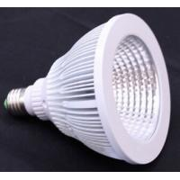 COB 12W E27 LED Spot PAR38 Light Manufactures