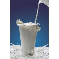 White Food Grade Casein Phosphopeptide For Non-Dairy Beverage Manufactures