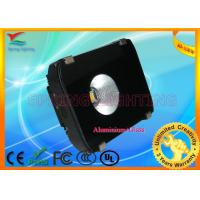 High power 80W / 100W, 90 lm/w, IP65 LED Projection Lamp Ce & RoHs approval Manufactures