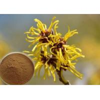 Hamamelis Virginiana Extract Cosmetic Raw Materials For Moisturize / Skin Whitening Manufactures