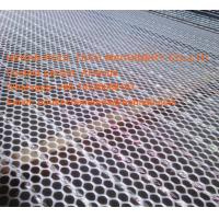 Poultry Chicken Farm Fence Net  White PE Plastic Floor Wire Mesh & Fence Mesh for Broiler Ground Raising System Manufactures
