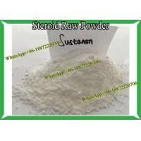 Injectable Steroid Testosterone Sustanon 250 / Sust 250 Muti Ester Raw Powder For Bodybuilding Manufactures
