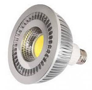 E27 COB LED PAR38 spot lighting Manufactures