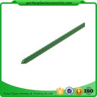 Green Steel Garden Stakes PE Plastic Coated 8mm Diameter , 60cm Length  Plant support Steel with plastic coated Manufactures