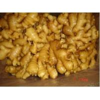 Buy cheap Air-Dried Ginger from wholesalers