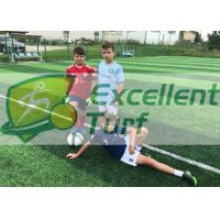 Monofilament PE  Artificial Grass Projects , Durable Upright Fake Sports Grass With Double Color Manufactures
