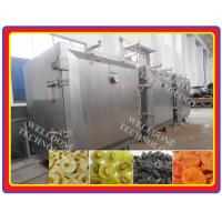 80% Drying Efficiency Vacuum Tray Dryer Less Heat Loss For Fruit Drying Manufactures