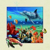 Home Wall Decoration Custom Lenticular Printing 5d Depth 20 x 20cm Dolphin Poster Manufactures