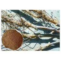 Apple Tree Root Pure Natural Plant Extracts , Extraction Of Medicinal Plants CAS 60 82 3 Manufactures