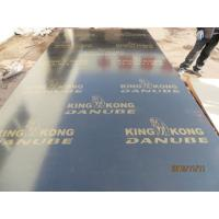 KINGKONG BRAND BLACK FILM FACED PLYWOOD, MR GLUE, POPLAR CORE, BLACK FILM or BLACK PRINTED FILM.HIGH QUALITY Manufactures