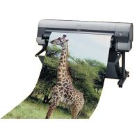 perfect offset posters printing and design Manufactures