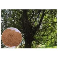 Brown Antimicrobial Plant Extracts , Salicin White Willow Bark Extract Relieving Headache Manufactures