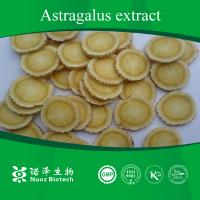 Astragalus Root Extract Nutrition supplement Manufactures