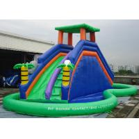Double Inflatable Water Slide Among Pool PVC Tarpaulin Material Water Park Slide Manufactures