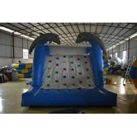 Fireproof Inflatable Sports Games  , Inflatable bouncy castles with slide Manufactures