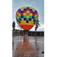 Go Sightseeing Inflatable Advertising Balloons Hot Air Balloon For Nice Trip Manufactures