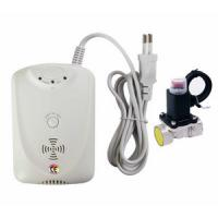 EN50291 Carbon Monoxide Co Alarm Detector With Self Testing Button Manufactures