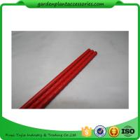 PE Coated Metal Garden Plant Stakes 8mm Diameter , 75cm Length Metal Garden Stakes  Lengt  Dia:11mm  Dia:11mm Manufactures