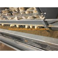 Buy cheap Malaysia Chicken Farming Hot Galvanized Cage H Type Battery Baby Layer Chicken Cage & Small Layer Cage with 112 Birds from wholesalers