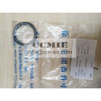 Construction Machinery Parts Wheel Loader Spare Parts O Seal Ring 250200687 Manufactures