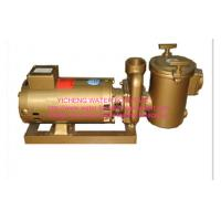 Brass  swimming pool equipment Centrifugal Pump Big Filtration Sea Water Manufactures