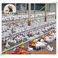 Poultry Farming Steel Automatic Broiler Chicken Floor Raising System & Deep Litter System with Nipple Drinker System Manufactures