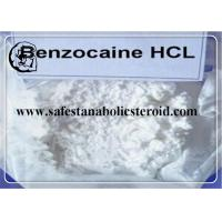 Local Anesthetic Ingredient Benzocaine Hydrochloride 99% High Purity CAS 23239-88-5 Manufactures