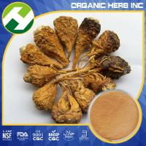Lepidium meyenii (maca) extract/ fine herbal extract powder Manufactures