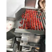 Low Energy Tomato Processing Machine Forced Circulation Evaporator 200KG Weight Manufactures