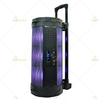 Pro Audio 15 Inch Bass Bluetooth Trolley Speaker Sound System For Instrument Manufactures