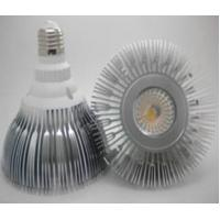 COB LED PAR38 light 12W Manufactures