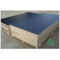 12mm Hardwood Core Film Faced Plywood Film Faced Plywood Manufactures
