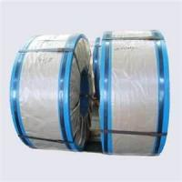 BS EN 10202, JIS G3303 2.8 / 5.6 weight cold rolled Tinplate sheet metal Coil Manufactures
