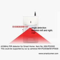 security wireless PIR motion alarm detector for 720P camera system by phone monitor Manufactures