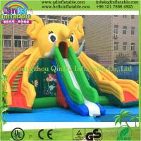 Guangzhou QinDa Inflatable Slide for Pool Water Slides for Sale Inflatable Elephant Slide Manufactures