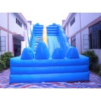 2014 New Giant Inflatable Water Slide for Adult/Biggest Inflatable Water Slide for Sale Manufactures