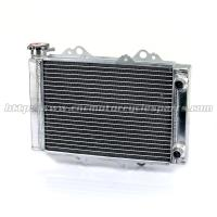 High Polish ATV Radiator Cooling With Caps Quad Parts And Accessories Manufactures