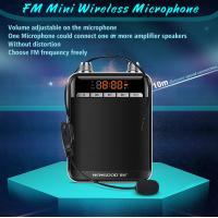 China FM Radio Type Wireless Headset Microphone for professional voice amplification on sale