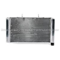 Light Weight Aluminum Alloy Custom Motorcycle Radiator , Motorbike Honda CB600 Radiator Manufactures