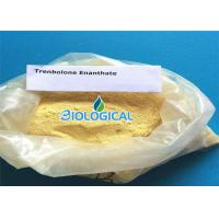 Pharmaceutical Grade Trenbolone Enanthate Powder 10161 33 8 For Muscle Gaining Manufactures