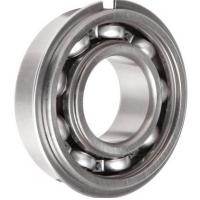 P6 6000 Series Brass Cage Cylindrical Roller Bearing Low Vibration Z1V1 Z2V2 Manufactures