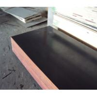 Phenolic Core Film Faced Plywood Manufactures