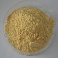 100% natural Panax Ginseng Extract Ginsenosides 20% -80% UV,CAS Number :41753-43-9 Manufactures