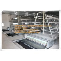 Quality New Steel Sheet Silver White Poultry Farm Automatic Baby Chicken Cage Equipment for sale