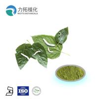 Mulberry  leaf extract powder / DNJ Weight loss activities against a-glycosidase Manufactures