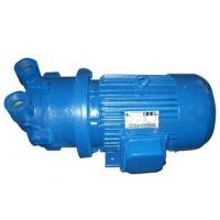 Single Stage Water Ring Vacuum Pump used for Vacuum Concentration Manufactures