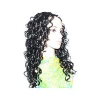 Synthetic Lace Front Wig (FLW-017) Manufactures